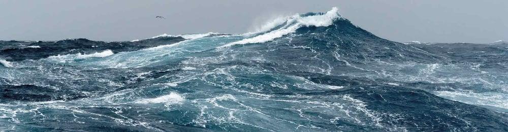 oceanwebS.jpg