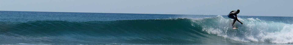 surfingsmallweb.jpg